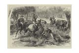 Kangaroo-Hunting in Australia Giclee Print