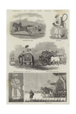 Sketches in India from Native Drawings Giclee Print