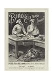 Advertisement, Bird's Custard Powder Giclée-Druck