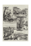 Sketches of Life in Queensland Giclee Print