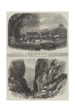 Scenery of the Cape Giclee Print
