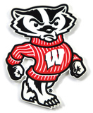 Wisconsin Badgers Bucky Steel Magnet Magnet