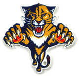 Florida Panthers Steel Magnet Magnet