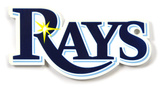 Tampa Bay Rays Steel Magnet Magnet