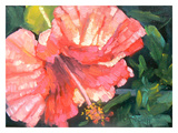 Hawaiian Florals Giclee Print by Carol Schiff