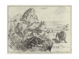 A Strange Defensive Alliance, Baboons and Man Against the Lion Giclee Print
