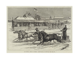 Our Special Artist in Siberia, Horse-Racing at Irkutsk Giclee Print