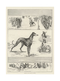 Sketches at the Waterloo Cup Meeting Giclee Print