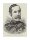 Colonel the Honourable P S Methuen Giclee Print