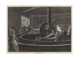 Cider-Making in Normandy Giclee Print