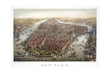 New York, 1873 Giclee Print