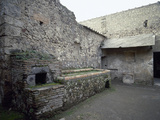 Italy, Pompeii, Villa of the Mysteries Giclee Print