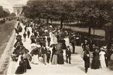 Avenue Bois De Boulogne, Paris, 1880 Photographic Print