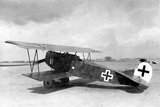 Fokker Dvii, Germany, 1917 Photographic Print