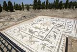 Roman City of Italica, House of Neptune, Spain Photographic Print