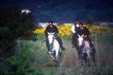 Horse Race, Cavalcata Celebration, Sassari, Sardinia, Italy Photographic Print