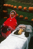 Pumpkin Scarecrow, Finger Lakes, New York Photographic Print