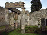 Italy, Pompeii, Villa of Diomedes, Atrium-Peristyle Photographic Print