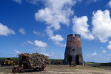 Drax Hall Sugar Mill, Barbados Photographic Print