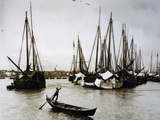Boats known as Bragozzi, Chioggia, Italy, Early 20th Century Photographic Print
