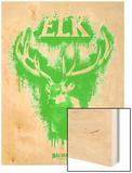 Elk Spray Paint Green Wood Print by Anthony Salinas