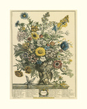 November Giclee Print by Robert Furber