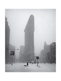 Flatiron Building Blizzard Dog Walker Photographic Print by Henri Silberman