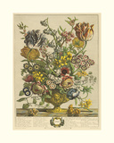 April Giclee Print by Robert Furber