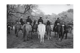 Prospect Park Police Horse Contest Photographic Print by Henri Silberman