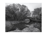 Central Park Bridge 2, NYC Photographic Print by Henri Silberman