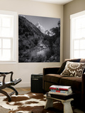 Zion National Park Virgin River Wall Mural by Henri Silberman