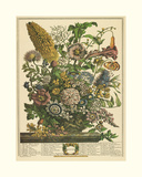 August Giclee Print by Robert Furber