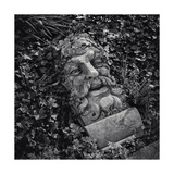 Botanic Gardens Statue Bearded Man Photographic Print by Henri Silberman