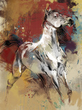 Balius Giclee Print by Ken Hurd