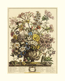 October Giclee Print by Robert Furber