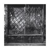 Manhattan Store Window Gate Shadows Photographic Print by Henri Silberman