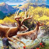 Big Buck HD Cabinet Art Autocollant par John Youssi