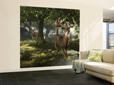 Big Buck Whitetail Deer Wall Mural – Large by Mike Colesworthy