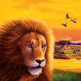 Big Buck Safari Lion Cabinet Art Autocollant par John Youssi