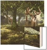 Big Buck Whitetail Deer Wood Print by Mike Colesworthy