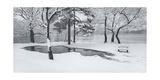 Prospect Park Snowy Bench Panorama Fotografisk tryk af Henri Silberman