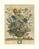 February Giclee Print by Robert Furber