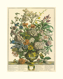 July Giclee Print by Robert Furber