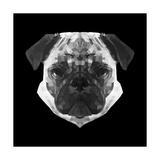 Pug Head Posters by Lisa Kroll