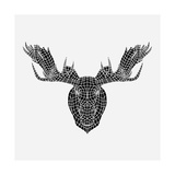 Moose Head Mesh Prints by Lisa Kroll