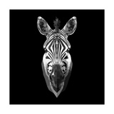 Black Zebra Head Posters by  NaxArt