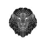 Lion Head Black Mesh 2 Posters by Lisa Kroll