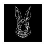 Rabbit on Black Premium Giclee Print by Lisa Kroll