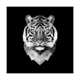Tiger Head Prints by Lisa Kroll