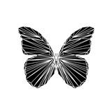 Black Butterfly Posters by Lisa Kroll